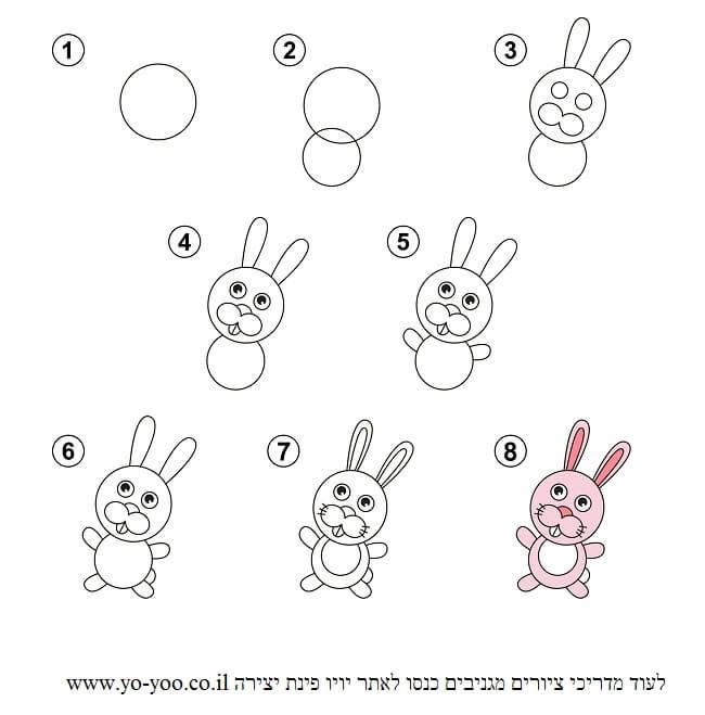 לצייר ארנב בשלבים
