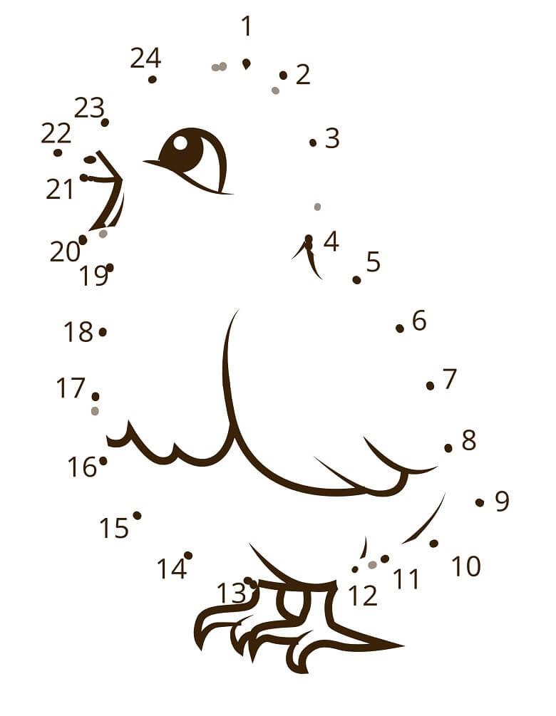 חיבור נקודות לפי מספרים