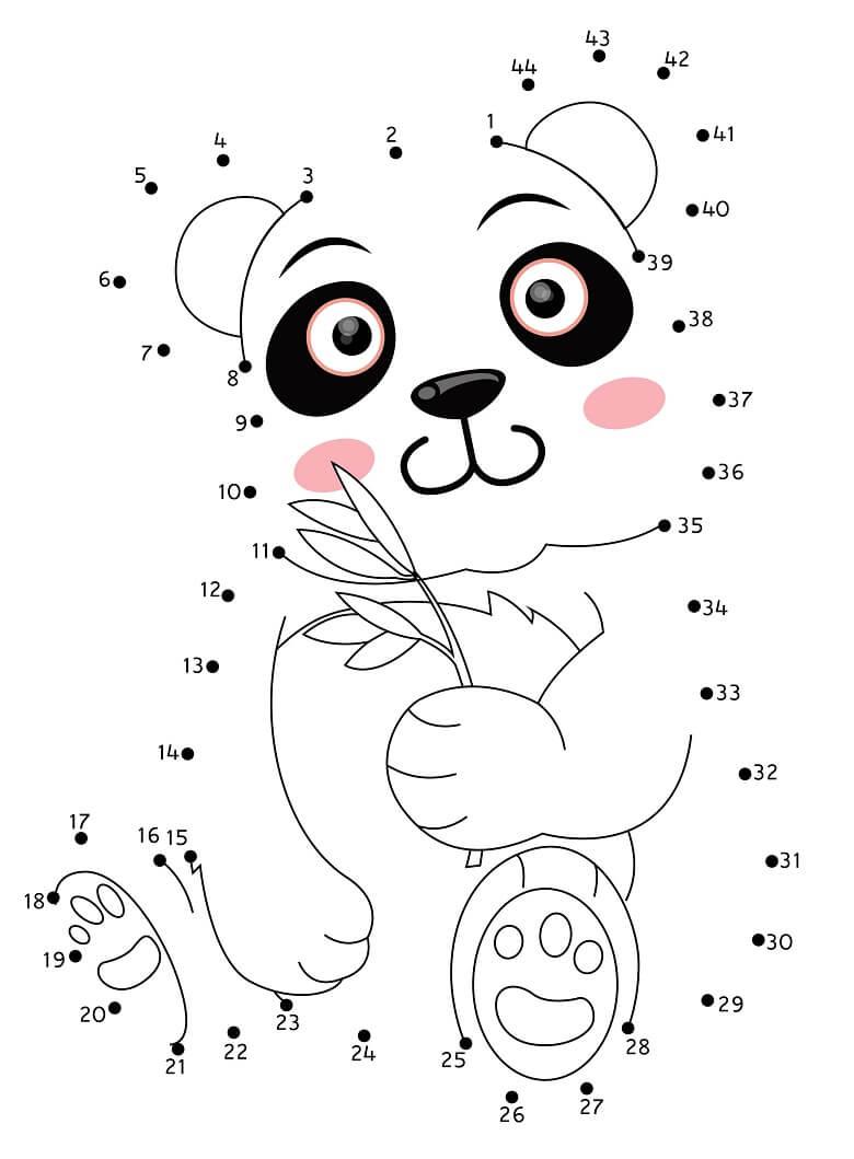 חיבור נקודות דובי