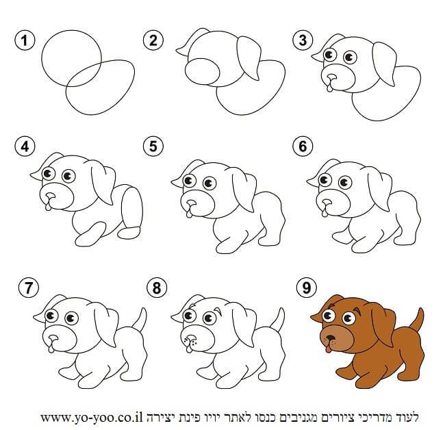 לצייר כלב קל