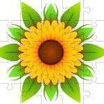 פאזל של פרח