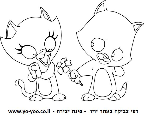 דף צביעה חתולים