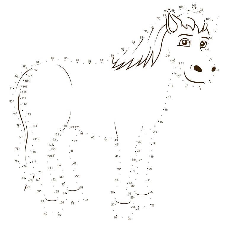חיבור נקודות סוס