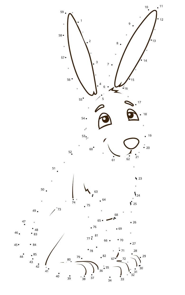 חיבור נקודות ארנב