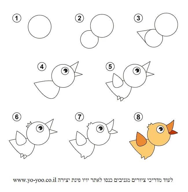 איך לצייר ציפור