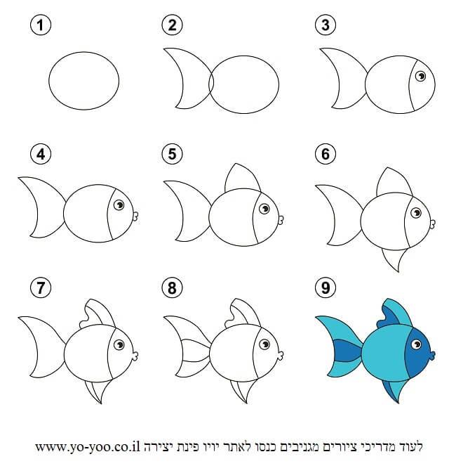 איך לצייר דג